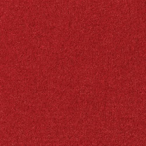 Schmutzfanginlay Swisslon Uni Rot