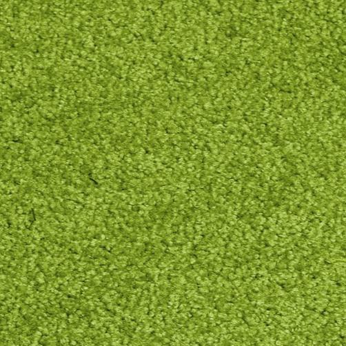 Sauberlaufmatten PT-max uni grün