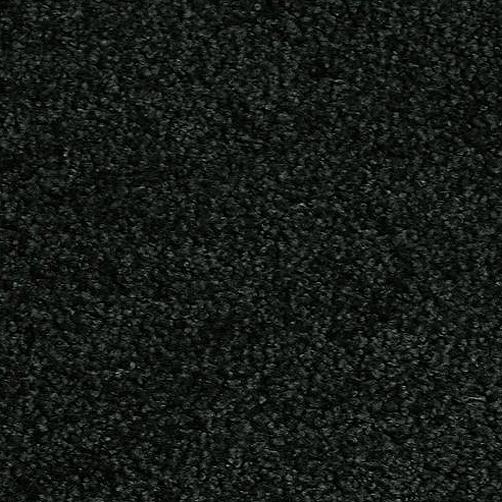Sauberlaufmatten PT-max uni schwarz